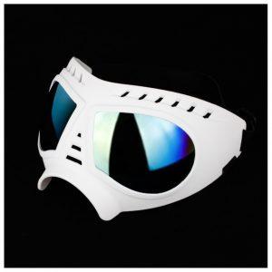 Adjustable-Pet-Dog-Goggles-Sunglasses-Sunproof-Windproof-Snow-Free-Size-Eye-Wear-Swimming-Skating-Glasses.jpg
