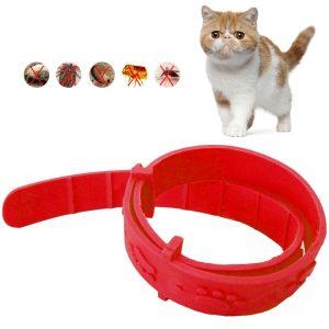 Hot-Sale-Anti-Flea-Mite-Tick-Cat-Collar-No-Flea-Grooming-Tool-kitten-Remedy-Neck-Strap-5