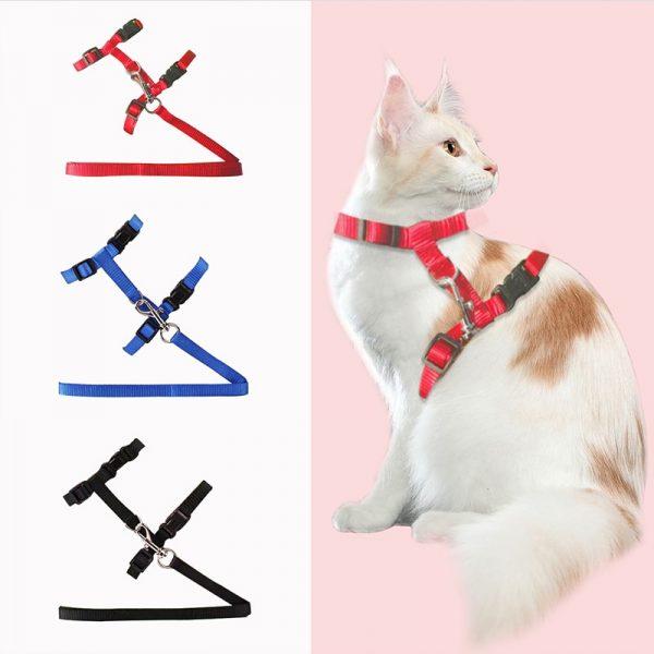 Cat-Dog-Collar-Harness-Leash-Adjustable-Nylon-Pet-Traction-Cat-Kitten-Halter-Collar-gato-Cats-Products-1